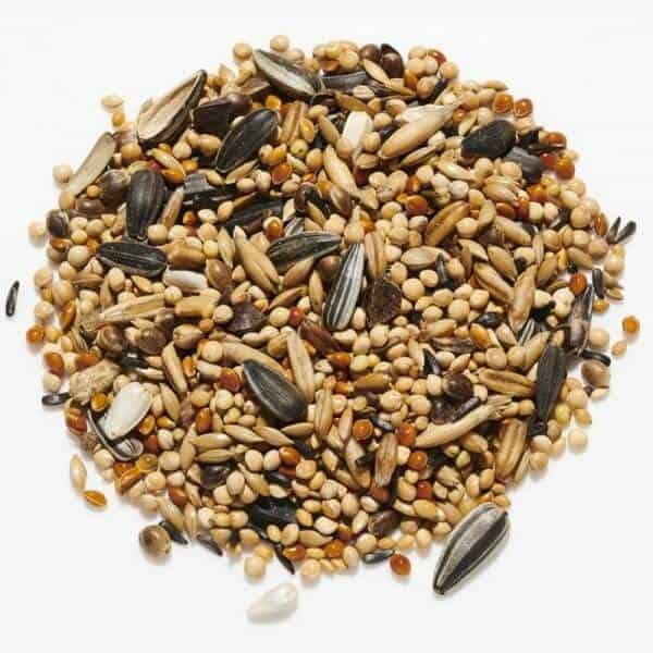 cockatiel seed mix