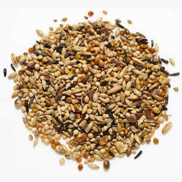 neophema seed mix