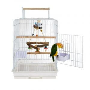 santa monica bird cage
