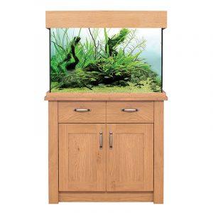 aquariium