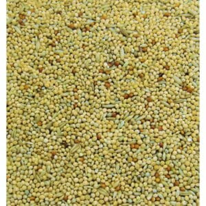 Colonels Budgie seed mix
